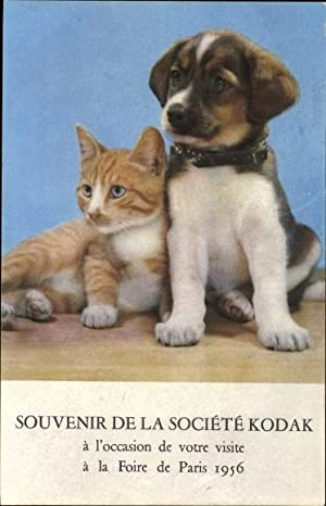 Ansichtskarte / Postkarte Getigerte orange Katze und