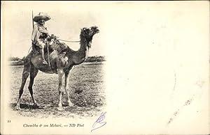 Ansichtskarte / Postkarte Chambla et son Mehari,