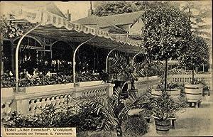 Ansichtskarte / Postkarte Hamburg Wandsbek Wohldorf, Terrassenpartie