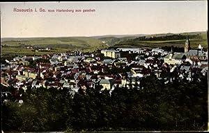 Ansichtskarte / Postkarte Roßwein in Sachsen, Teilansicht