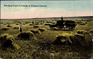 Ansichtskarte / Postkarte Stacking Grain to Thresh in Western Canada