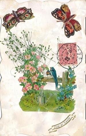 Shop Raupen Schmetterlinge Collections Art Collectibles