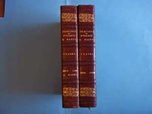 Beauties of England and Wales. The Plates in Two Volumes. Approx 315 Plates.