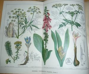 Cassells Encyclopaedia of General Information. With coloured plates and maps and numerous full-page...