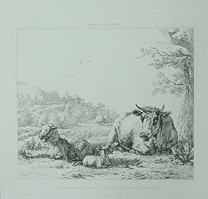 The shepard behind the tree. Radierung von: Cooke, George (1781-1834):