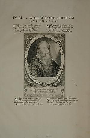 Portrait. Brustfigur nach halbrechts in Schriftoval. Bezeichnet: Albizzi, Antonio (1547