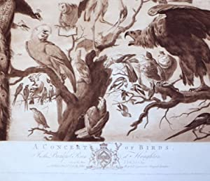 A CONCERT OF BIRDS: Snyders Frans ( after ) Mario ( Di Fiori ) Nuzzi ( incorrectly Aattributed to )...
