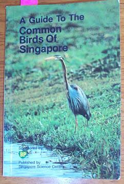 Guide to the Common Birds of Singapore, A