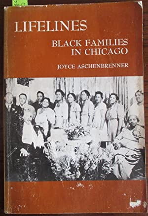 Lifelines: Black Families in Chicago (Case Studies in Cultural Anthropology)