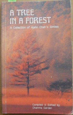 Tree in a Forest, A: A Collection of Ajahn Chah's Similes