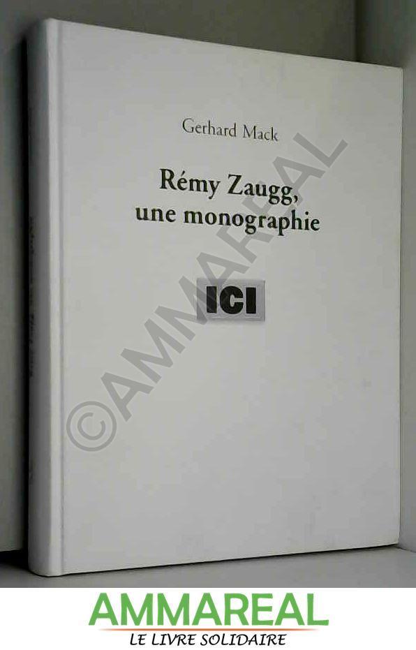 Remy zaugg, a monograph - Schmidt/Mack