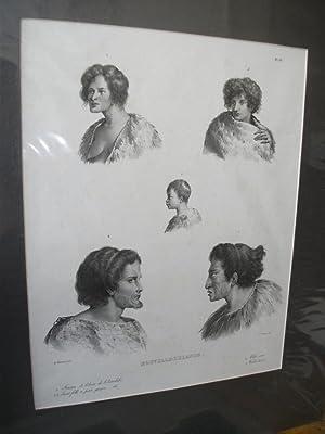 Nouvelle Zelande - Lithograph: SAINSON, Louis Auguste De