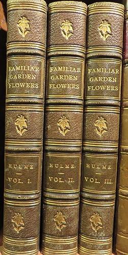 Familiar Garden Flowers. 3 Vols: HULME, F. Edward