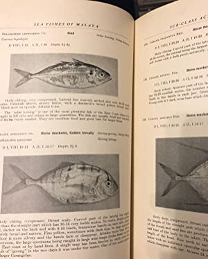 An Introduction to the Sea Fishes of: SCOTT, J.S.