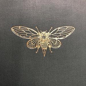 Fragments of New Zealand Entomology. A Popular: HUDSON, George Vernon