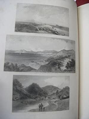 Pictorial Illustrations of New Zealand: BREES S.C.