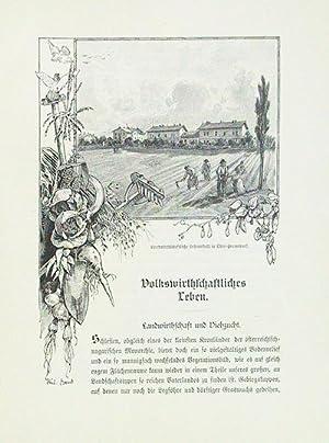 Die österreichisch-ungarische Monarchie in Wort und Bild. Mähren und Schlesien. Auf ...