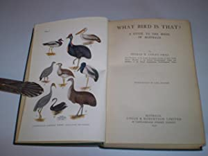 What Bird Is That? A Guide to the Birds of Australia: Neville W Cayley