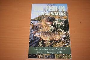 Big Fish in Foreign Waters: Davies-Patrick Tony, Hoogendijk