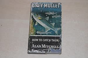 Grey Mullet. How to catch them