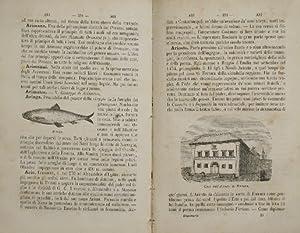 Dizionario di cognizioni utili: AA.VV.