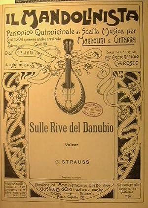 Sulle rive del danubio: Strauss Giovanni