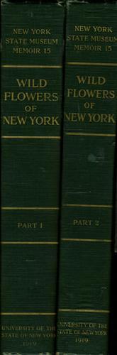 Wild Flowers of New York: House, Homer D. John M. Clarke, Director, State Museum