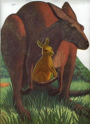 Kankie Kangaroo. Who Couldn't Hop. Die cut: Ross, Roselle