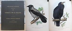 Les Oiseaux de la France. Premiére Monographie. Corvidès.: D`Aubusson, Louis Magaud.