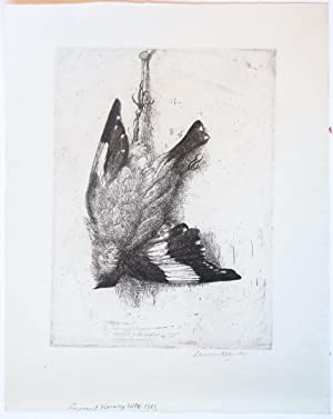 Dead bird hanging (dode vogel).