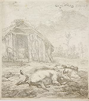 Ets/Etching: The pigs resting in front of a barn (Varkens slapen voor de schuur).