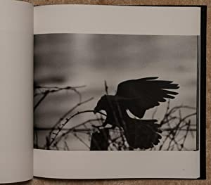 The Solitude of Ravens. With 62 b/w: Fukase, Masahisa