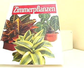 Zimmerpflanzen zvab for Zimmerpflanzen versand