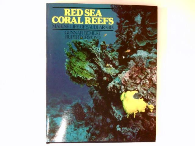Red Sea Coral Reefs  Marine Life of Saudi