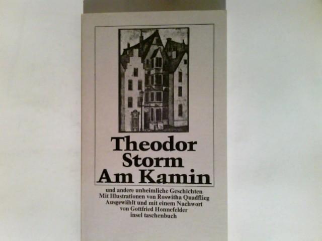Am Kamin und andere unheimliche Geschichten. .Ausgew.: Storm, Theodor:
