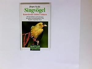 Singvögel kennenlernen, erleben, schützen: Nicolai, Jürgen: