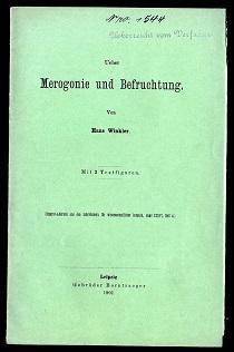 Über Merogonie und Befruchtung.: Winkler, Hans: