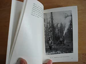 Bilder von der Nonnenbekämpfung im Waldviertel (Niederösterreich): Schimitschek, Prof. Dr.