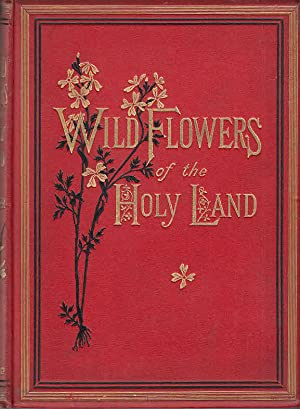 Wild flowers of the Holy Land / fifty-four plates printed in colours, drawn and painted after nature