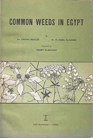 Common weeds in Egypt