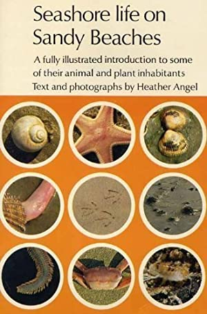 Seashore Life on Sandy Beaches : A fully illustrated introduction to some of theier animal and pl...