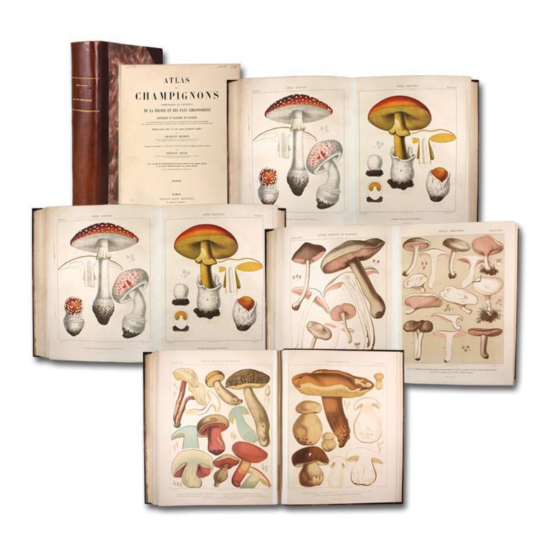 Atlas des champignons comestibles et vénéneux de: Richon, Charles und