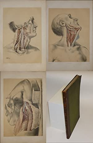 Illustrations of Dissections in a Series of Original Coloured Plates the Size of Life Representin...