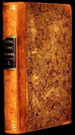 Robert Schumann`s Leben. Aus seinen Briefen geschildert: Erler, Hermann: