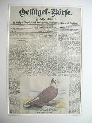 21. Febr. 1899): Gelbe Mäusertaube.: Wochenblatt