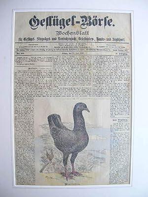 27. Juli 1897): Malteser. //: Wochenblatt