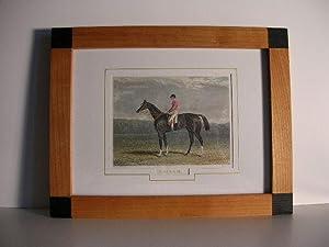 "Beiram."" //: Berühmte englische Pferde / Famous engl. Horses)"