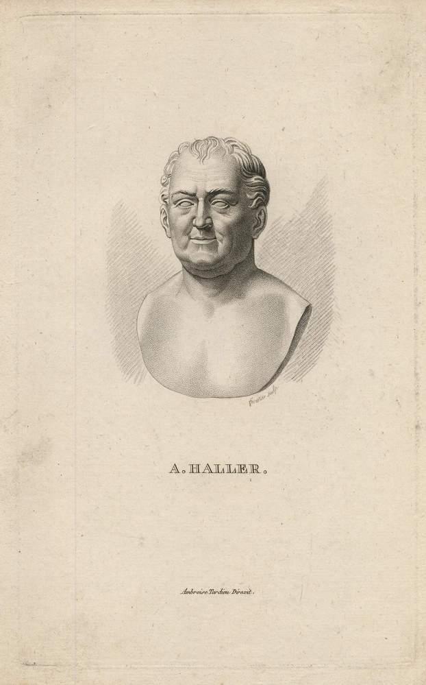 A. Haller. Stahlstich von Forestier bei Tardieu: Haller, Albrecht von