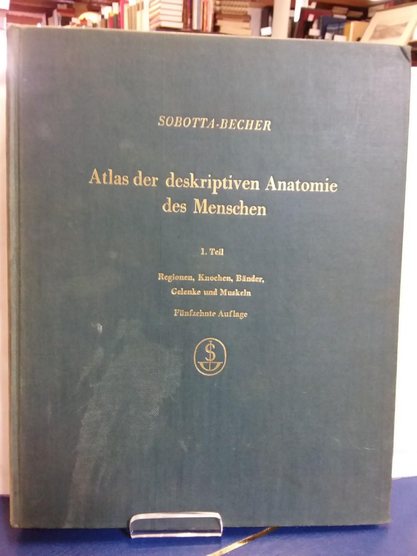 anatomie des menschen von sobotta - ZVAB