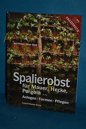 Obstanbau Pergola neu 2016 Obsthecken Spaliere Fachbuch Spalierobst